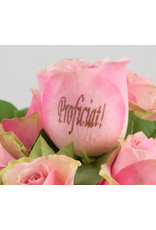 Magic Flowers Boeket 15 rozen - Roze - Proficiat
