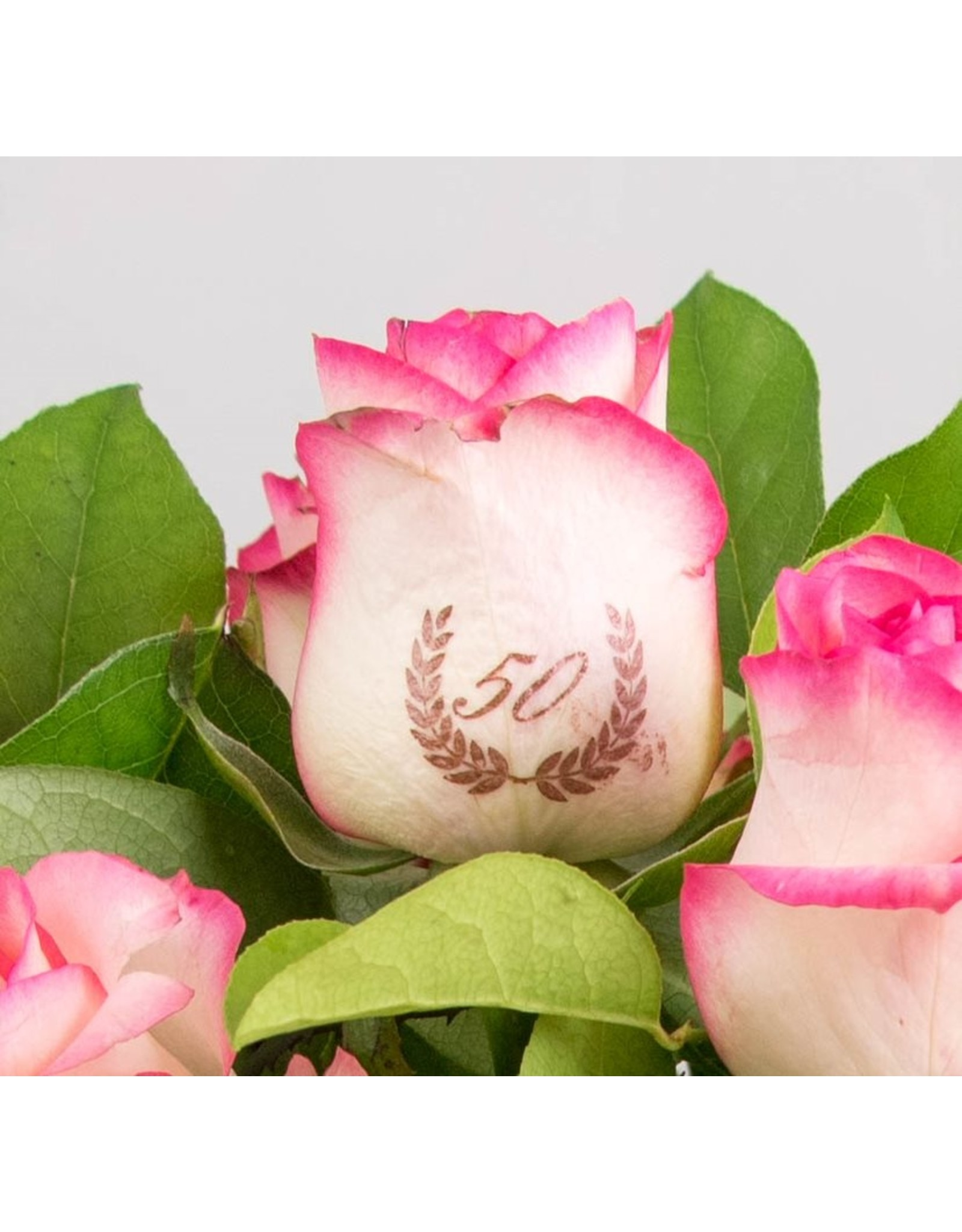 Magic Flowers Boeket 9 rozen - Wit/Roze - 50