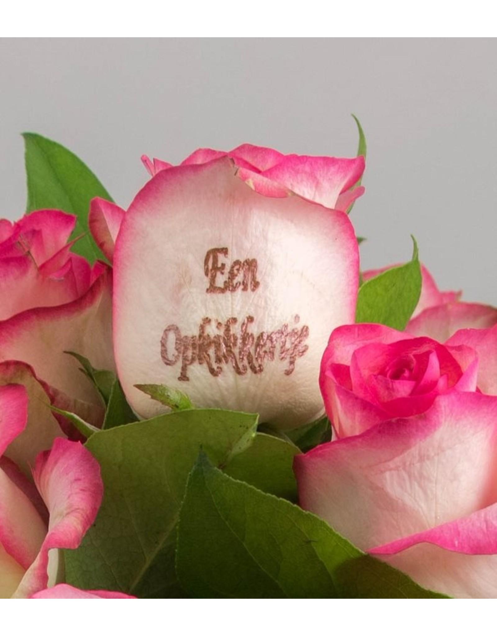 Magic Flowers Boeket 15 rozen - Wit/Roze - Een opkikkertje