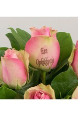 Magic Flowers Boeket 15 rozen - Roze - Een opkikkertje