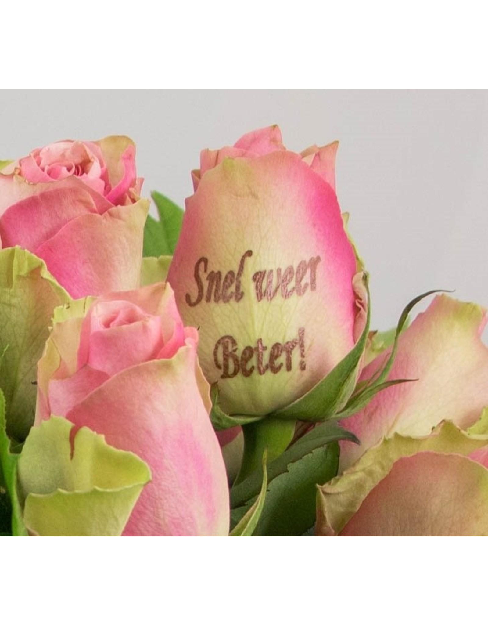 Magic Flowers Boeket 9 rozen - Roze - Snel weer beter