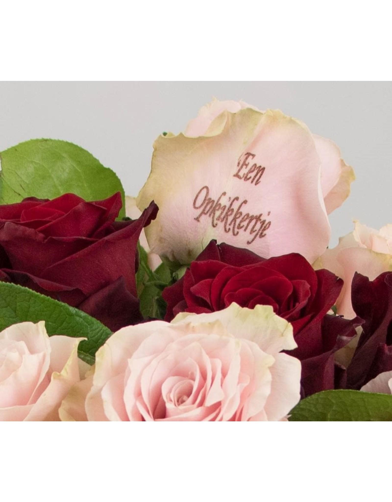 Magic Flowers Boeket 15 rozen - Rood/Roze - Een opkikkertje
