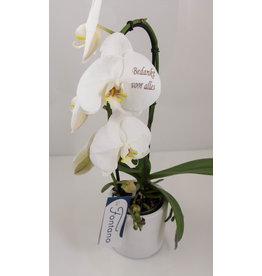 Orchidee - Bedankt voor alles