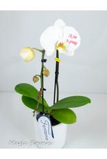 Orchidee - Ik zie je graag