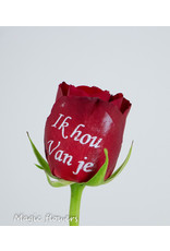 Valentine Special mix