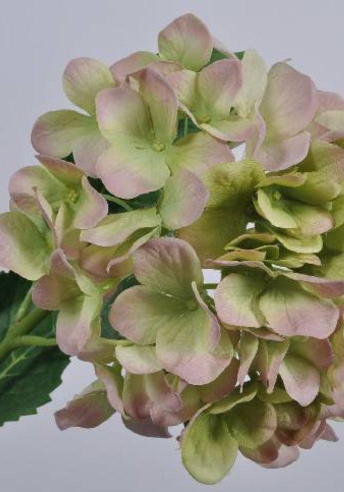 Silk-Ka Hortensia Tak Roze Groen 74cm