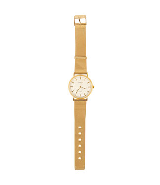 SELECTED BY DIORDIE Oh my watch gold