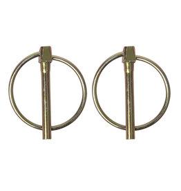 Borgpen 4,5mm met ring 2x