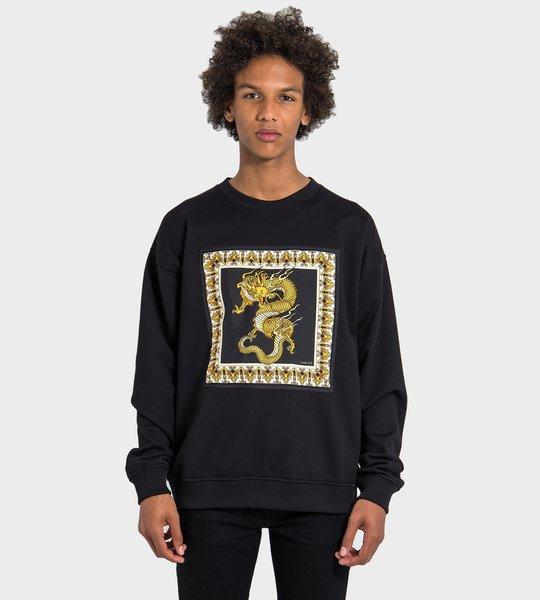 Dragon Print Sweater