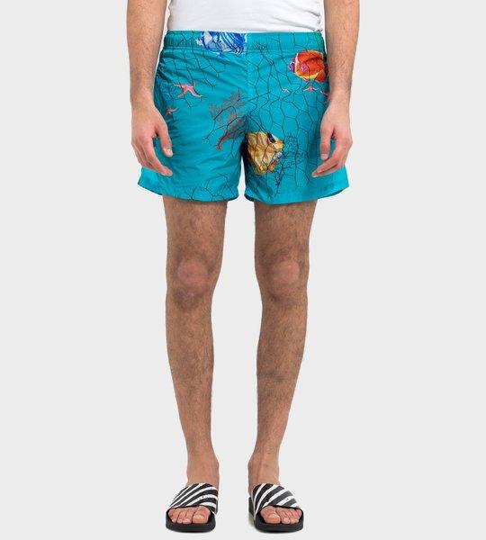 Ocean Swimwear