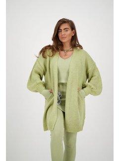 Reinders OS Vest lurex Sage Green