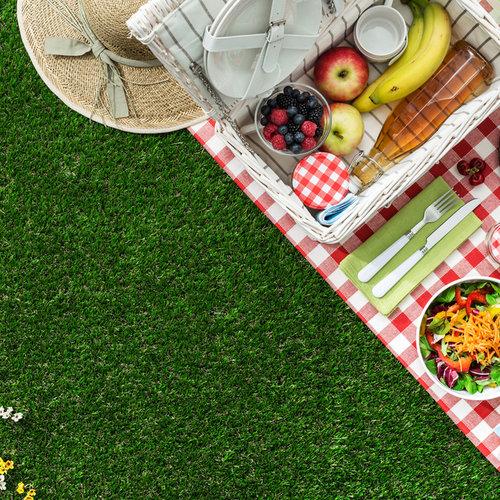 5 tips voor een leuke en bewuste picknick
