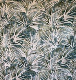 Weiße Areca-Palme
