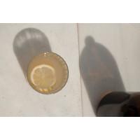 thumb-Gembier Kurkuma/Ananas | 6 stuks-3