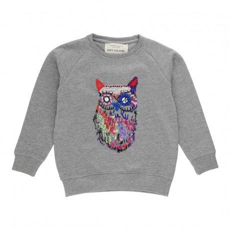 Sweatshirt  Chaz Owl-1