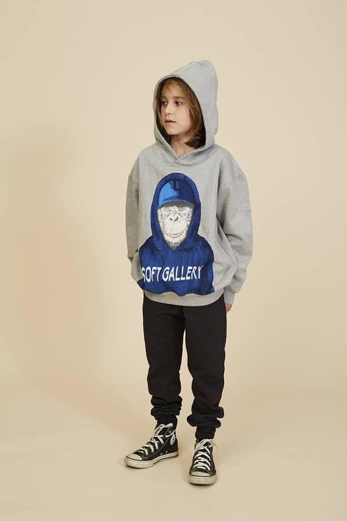Sweatshirt Bowie Hoodie Ape-3
