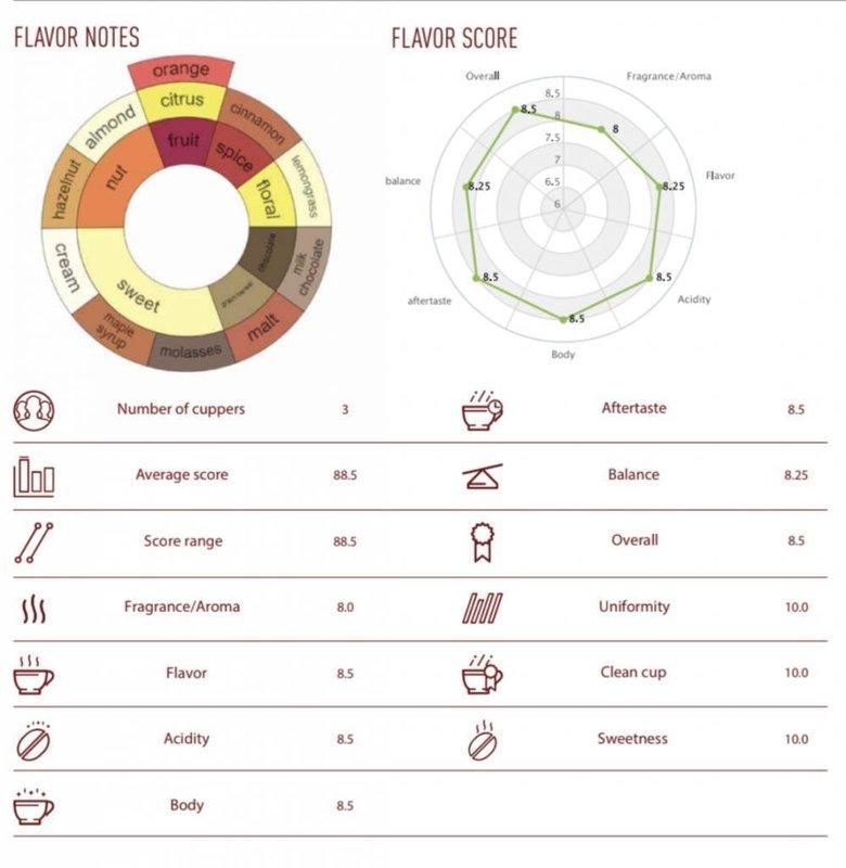 NoordCode Pure Coffee Licht Geroosterd Gemalen