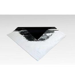Sunbounce SunBounce Pro Screen Reflector Black - RIP Stop Silver