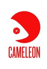 """Cameleon Cameleon Heavy Duty Grip met veer Stud & 1/4"""" draad"""