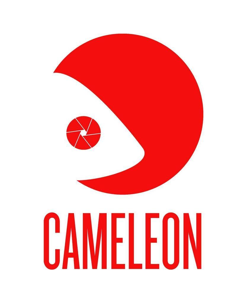 Cameleon Cameleon Heavy Duty Grip met veer