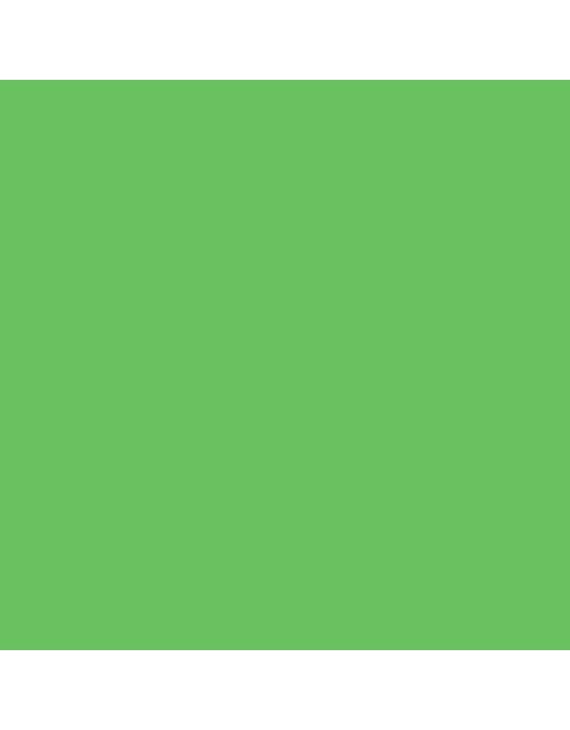 Colorama Papier 1.38m x 11m ChromaGreen #54  2e kans artikel /doos beschadigd OP=OP