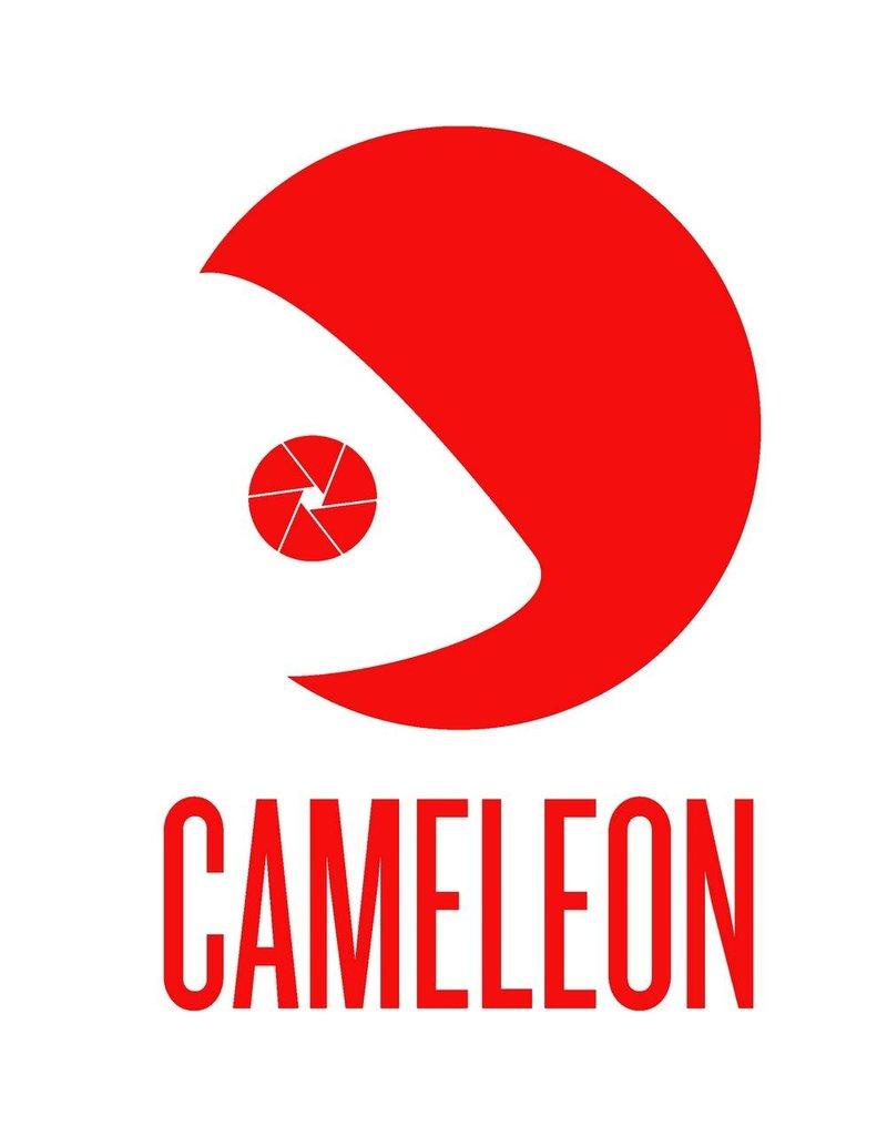 """Cameleon Cameleon Metalen Stud  1/4"""" schroef naar 1/4 """" 11-008"""