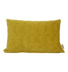 Cushion Daiya