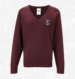 Banner Portavogie Primary V-Neck Sweater (1WP)