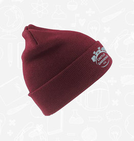 Result Castle Gardens Woolly Hat (RC029B)