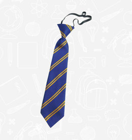 TSW Ties Belmont Primary Elasticated Tie (DS128EL)  Royal & Gold