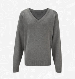 Banner 50/50 Cotton/Acrylic V-Neck (1WP) (BEL)