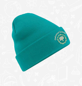 Beechfield Oakwood School Beanie (BB45)