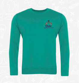 Banner Cedar Integrated Primary Sweatshirt (3SD)