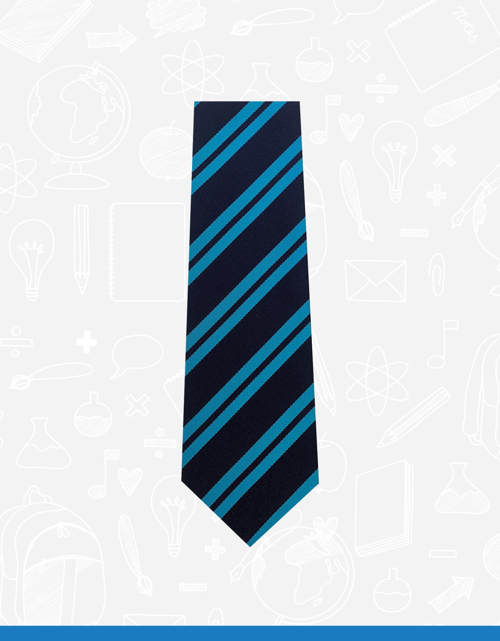 TSW Ties Bangor Academy 1st - 5th Form Tie