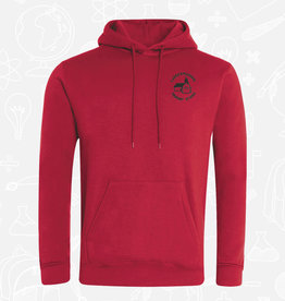 Banner Carrickmannon Primary Hoodie (3SH)