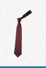 William Turner Ballyvester Primary Tie (TS2545)