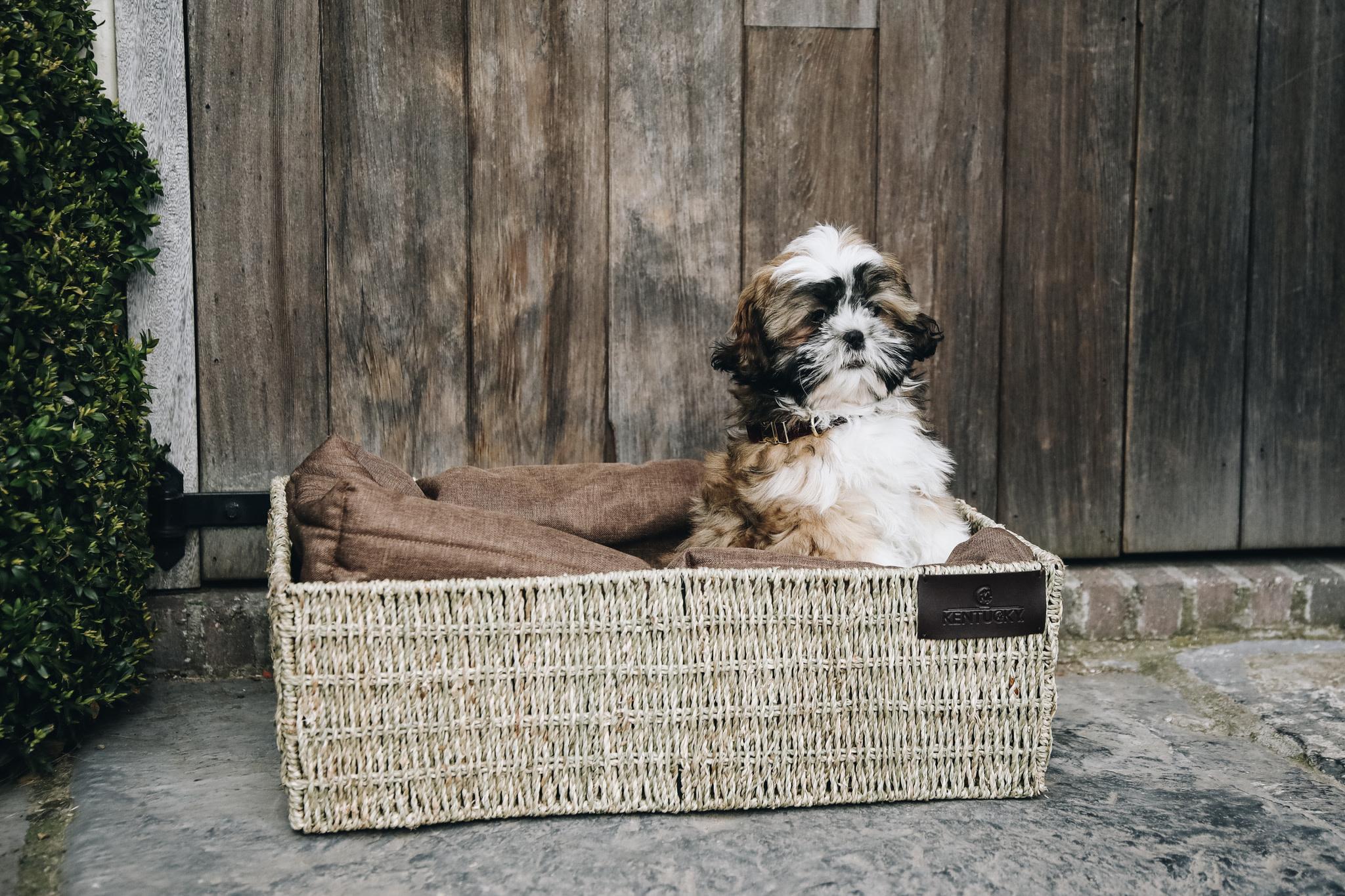 Kentucky Kentucky honden bed basket