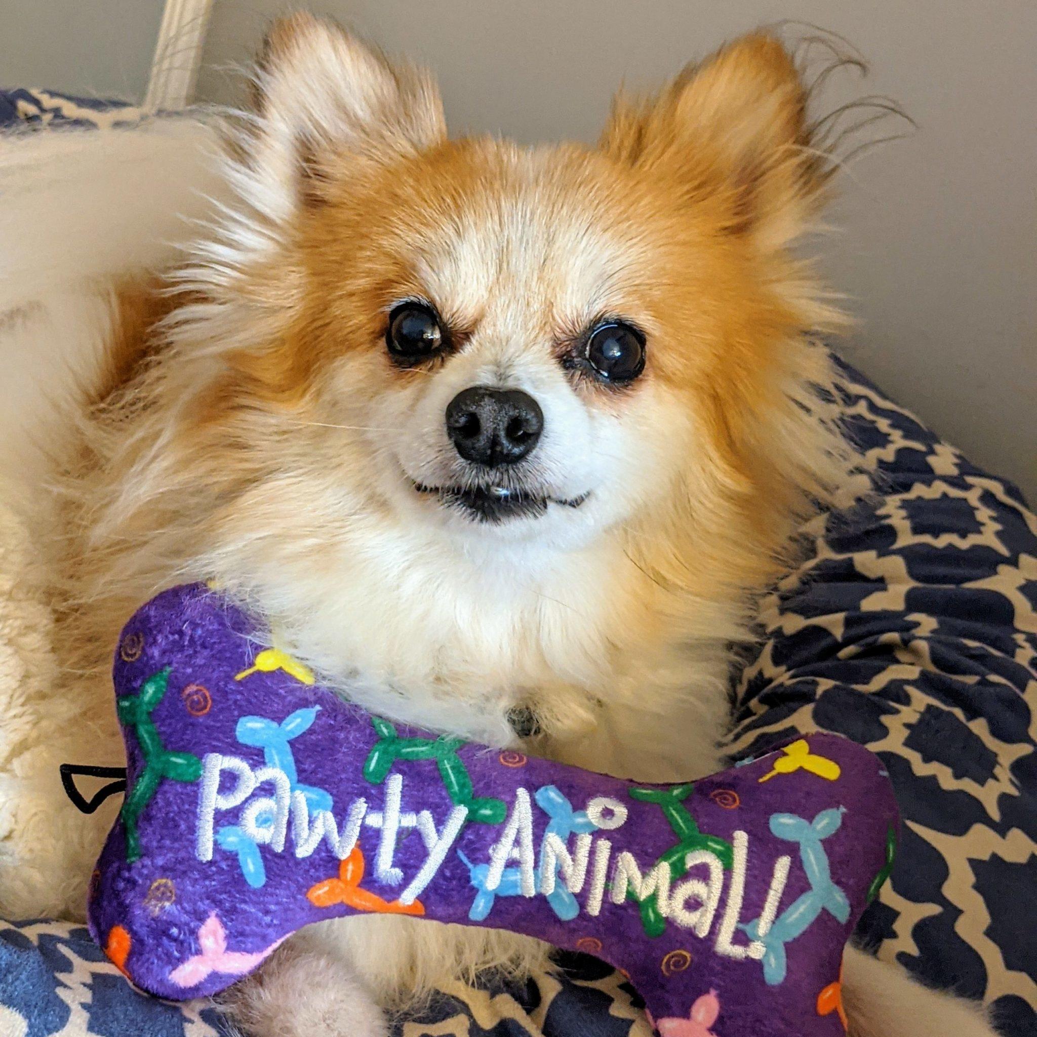 Huxley & Kent H&K bone pawty animal