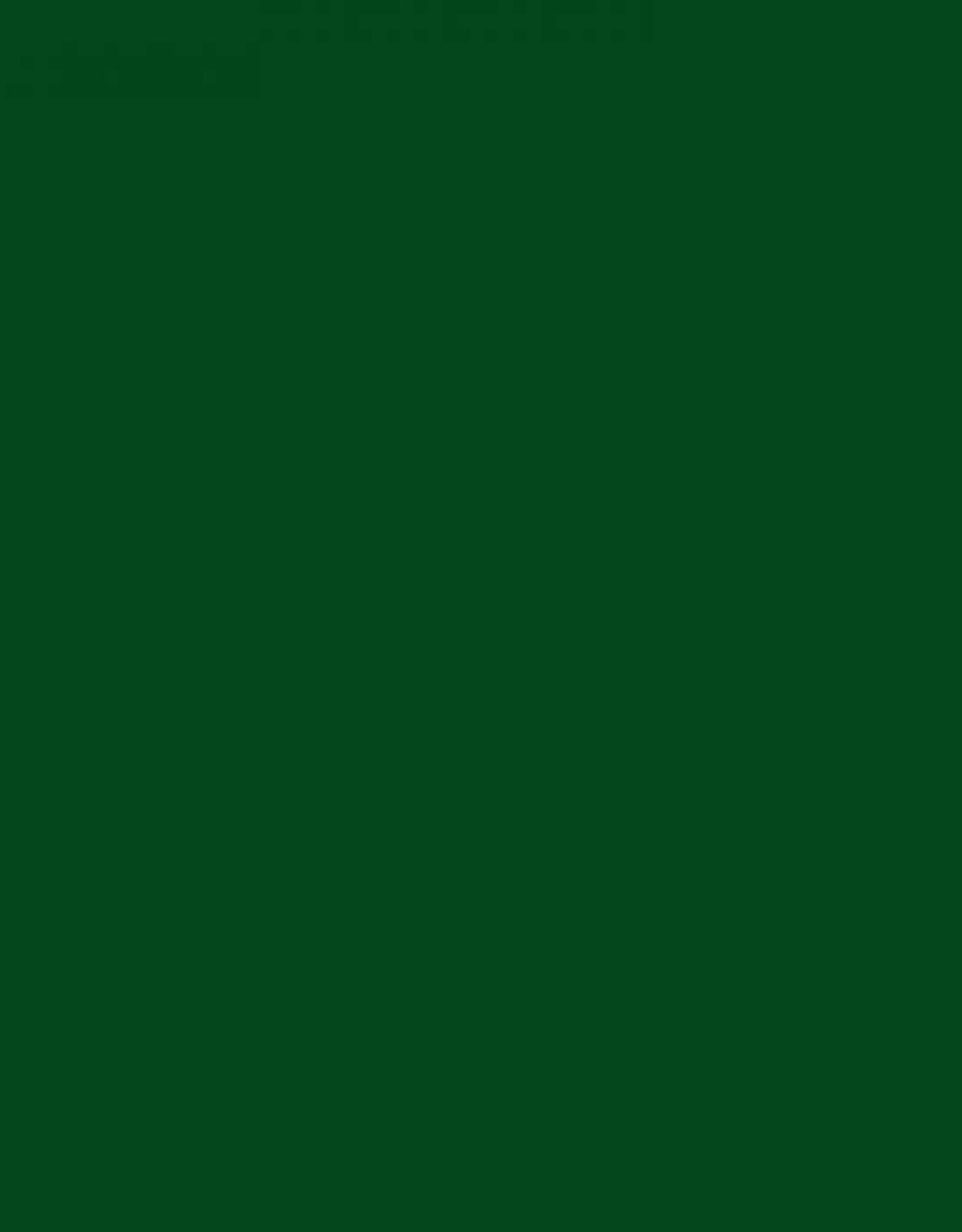 Siser Flockfolie Green