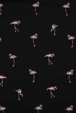 Qjutie Tricot katoen flamingo zwart