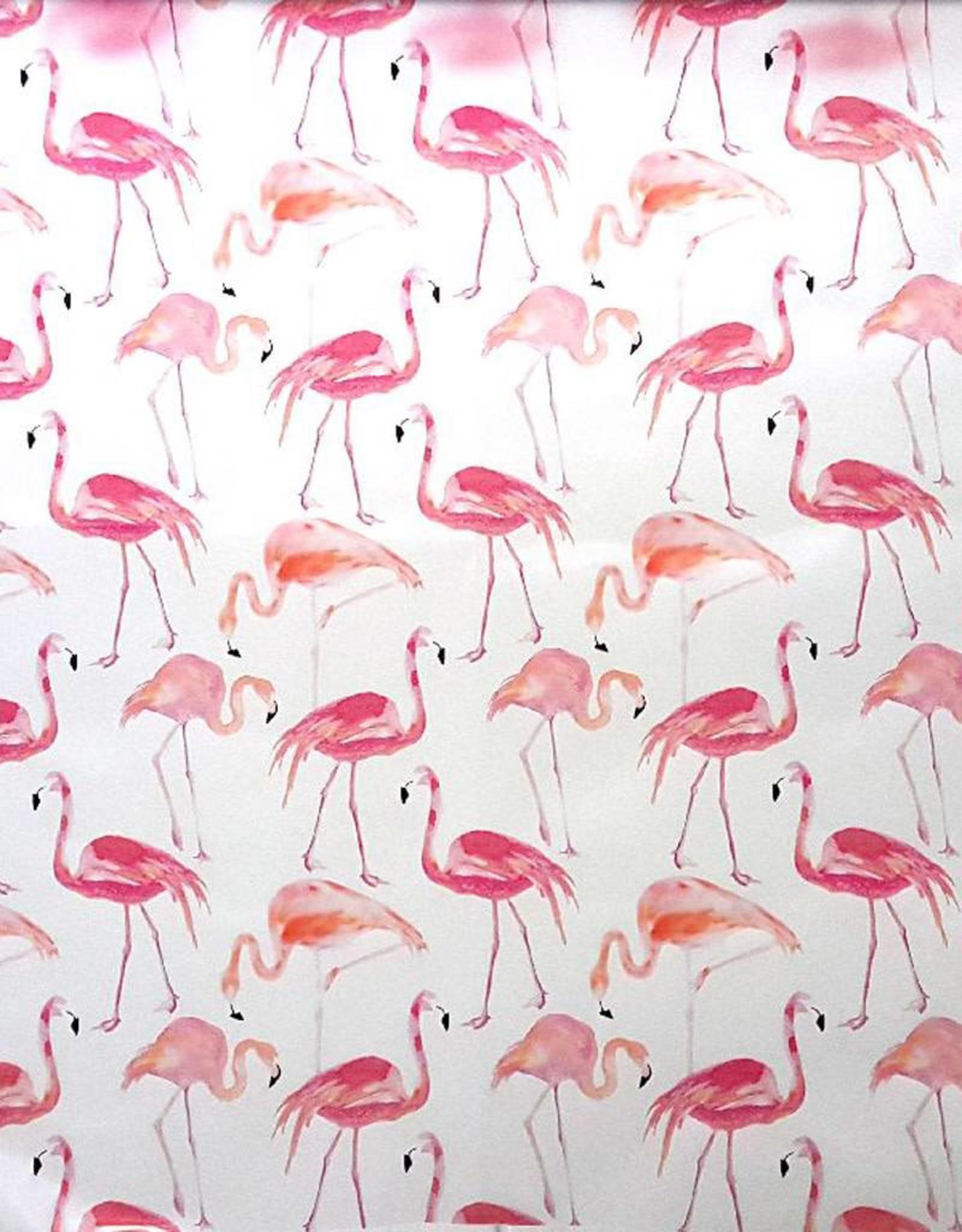 Poppy Rainy flamingo op rol