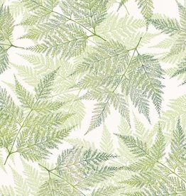 Hoffman Katoen leaves green tea/silver
