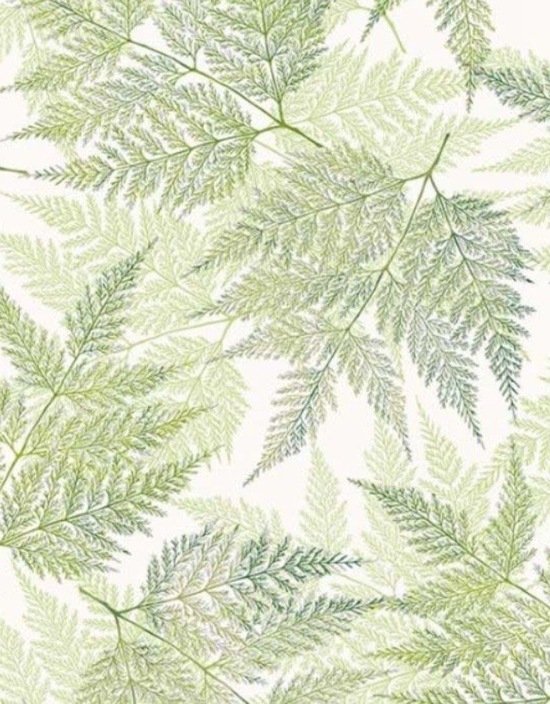 Hoffman Katoen leaves green tea/silver