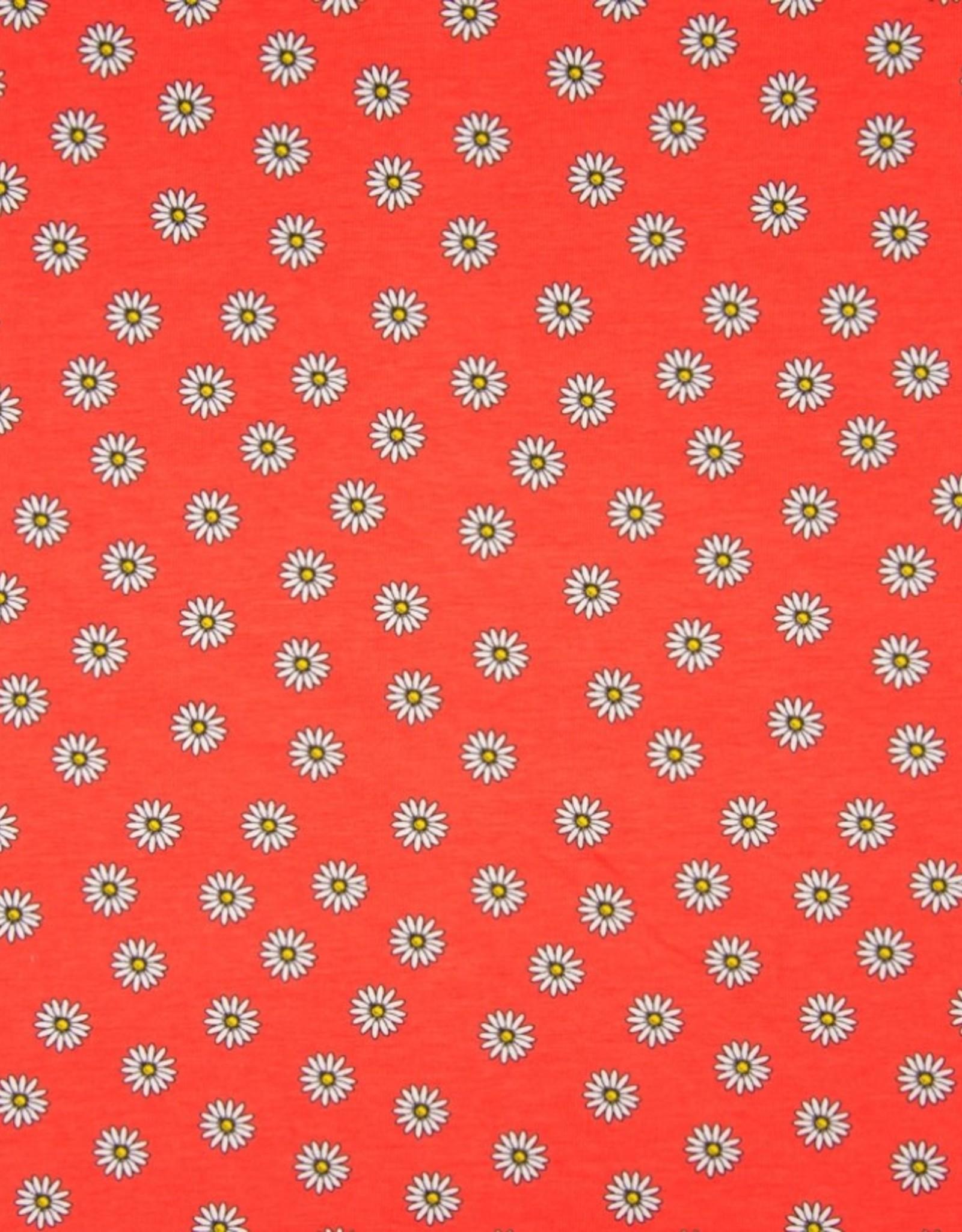 Qjutie Tricot katoen daisy Coral