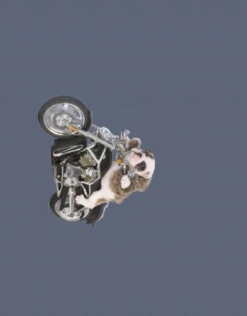Stenzo Tricot katoen panel motor jeans