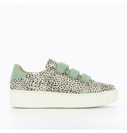 Cheetah & Green Sneakers with creeper sole