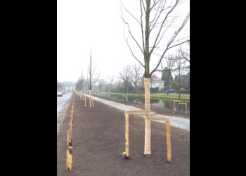 Boomkwekerij M. van den Oever jute boomband