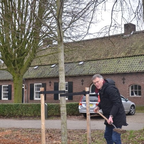 Saamhorigheid in coronatijd: plant een herdenkingsboom