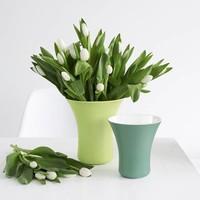 ASA Selection Vaso Vaas Appelgroen 22 cm