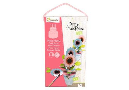 Avenue Mandarine Avenue Mandarine Happy Box Kleine Bloemplantjes